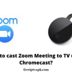Chromecast Zoom Meeting | How to cast Zoom Meeting to TV using Chromecast? [2020]